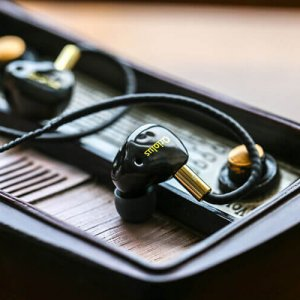 Oriolus Finschi Hybrid Headphone-